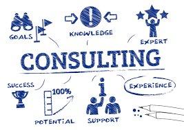 Consultant System